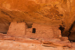 An ancient 1,000 year old Ancestral Puebloan cliff dwelling in Lower Mule Canyon on Cedar Mesa in the Shash Jaa Unit of the Bears Ears National Monument in southeastern Utah.
