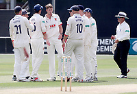 Matt Quinn of Essex celebrates taking the wicket of henry brookes during Essex CCC vs Warwickshire CCC, Specsavers County Championship Division 1 Cricket at The Cloudfm County Ground on 16th July 2019