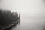 An ariel view of a part of the Stanley Park Seawall in the fog.
