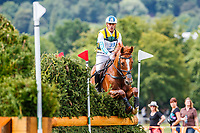 AUS-Andrew Hoy rides Vassily de Lassos during the SAP Cup - CICO4*-S Nations Cup Eventing Cross Country. 2019 GER-CHIO Aachen Weltfest des Pferdesports. Saturday 20 July. Copyright Photo: Libby Law Photography