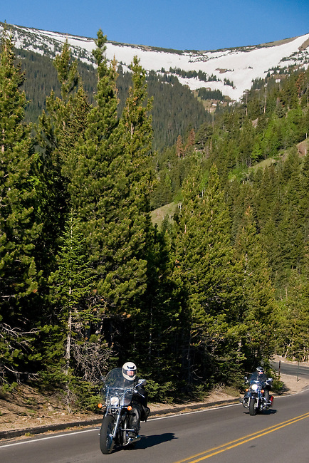 motorcycle, riders, Trail Ridge Road, travel, recreation, tourism, conifer, forest, trees, mountains, landscape, scenic, spring, morning, Hidden Valley, Rocky Mountain National Park, Colorado, Rocky Mountains, USA