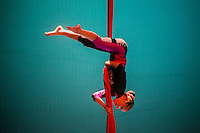 Quer&eacute;taro, Qro. 29 de abril de 2016.- Cerca de 1600 bailarines participaron en la celebraci&oacute;n del Dia Internacional de la Danza, celebrado en diferentes foros de la capital queretana; en la que participaron 96 compa&ntilde;&iacute;as de diferentes g&eacute;neros de la danza. Desde cl&aacute;sica, contempor&aacute;nea, folcl&oacute;rica, flamenco, tradicionales, etc.<br /> <br /> Este evento organizado por el Instituto municipal de cultura, coordinado por la direcci&oacute;n del Ballet Folcl&oacute;rico Santiago de Quer&eacute;taro.<br /> <br /> <br /> Foto: G. S&aacute;nchez / Obture.
