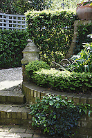 A clipped walk of pyracantha leads to a small yet much-used herb parterre