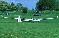 LS4, Winglets, LS 4 mit Winglets, Segelflug