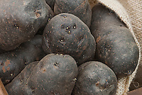 Black skinned potatoes Portland Black