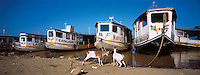 (EDITORS NOTE: Retransmission with alternate crop) Typical boats and daily life of Sao Francisco riverside - billy-goats at the port of Xique-Xique city, State of Bahia, Northeastern Brazil.