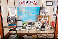 "Display cases with exhibit, ""James Bond, The Ornithologist and The Spy"" in the Main Floor, Gallery, Old Wing of the Academic Commons. Nov. 16, 2017.<br /> Everyone knows James Bond, a.k.a. 007, but few know the real James Bond, whom author Ian Fleming admired so much that he stole his name for his fictional character, nor the importance of Jamaica to the birth of the very British Secret Intelligence Service agent. To tell this most intriguing non-fiction tale, the exhibit brings together resources from Special Collections, particularly the Guymon Mystery and Detective Fiction Collection that boasts several 007 titles, the Moore Lab of Zoology, with bird specimens from the Caribbean, and the Cosman Shell Collection from the Biology Department.<br /> Thanks: The exhibit is curated by Helena de Lemos (Special Collections) and John McCormack Director/Curator Moore Laboratory of Zoology, with special assistance from Joseph Schulz (Cosman Shell Collection). The event is sponsored by the Academic Commons (with thanks to Gabriela Ortega and Daniel Chamberlain) and the Committee for Intellectual Community.<br /> (Photo by Marc Campos, Occidental College Photographer)"