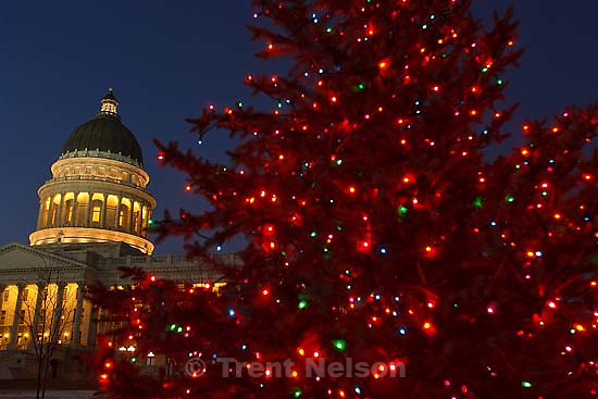 West Valley City - Utah Lieutenant Governor Gary Herbert turned on the holiday lights on a newly planted blue spruce tree on the state capitol grounds. Representative Wayne Harper, Senator Carlene Walker, and Ben Behunin Wednesday December 10, 2008.