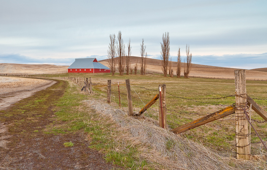 A red barn sits near a dirt road in the Palouse farmland in Eastern Washington State.