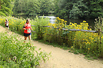 2017-07-19 Wakehurst Willow 15 SB rem