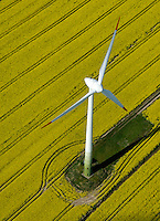 4415/Alternative Energie: EUROPA, DEUTSCHLAND, SCHLESWIG- HOLSTEIN, (GERMANY), 25.04.2007: Wind, Windkraft, Windrad, Windraeder, Windmuehlen, Windgeneratoren, Windturbinen, alternative Energie, erneuerbar, Anlage, Windenergie, Windenergieanlage, WEA, Kraftwerk, Windkraftanlage, Windkraftwerk, Wind-Kraftwerk, regenerative Energiequelle, Energiebedarf, Ressourcen, elektrischer Strom, Stromerzeugung, Stromquelle, dezentrale Energieversorgung, Energiegewinnung, kommunal, Wirtschaft, Energiewirtschaft, Elektrizitaet, Industrie, Investition, Umwelt, umweltfreundlich, Umweltpolitik, Landschaft, Raps, Pflanzen, Blueten, gelb, Feld, Rapsfeld, Rohstoff, Himmel, Wolken, Oekologie, Ueberblick, Uebersicht, Deutschland, Windraeder, Windmuehlen, Elektrizitaet, Blueten, Oekologie,.c o p y r i g h t : .A U F W I N D - L U F T B I L D E R . de.G e r t r u d - B a e u m e r - S t i e g 1 0 2,.2 1 0 3 5 H a m b u r g , G e r m a n y .P h o n e + 4 9 (0) 1 7 1 - 6 8 6 6 0 6 9.E m a i l H w e i 1 @ a o l . c o m .w w w . a u f w i n d - l u f t b i l d e r . d e.K o n t o : P o s t b a n k H a m b u r g .B l z : 2 0 0 1 0 0 2 0  K o n t o : 5 8 3 6 5 7 2 0 9.C o p y r i g h t n u r f u e r j o u r n a l i s t i s c h Z w e c k e, keine P e r s o e n l i c h ke i t s r e c h t e v o r h a n d e n, V e r o e f f e n t l i c h u n g n u r m i t H o n o r a r n a c h M F M, N a m e n s n e n n u n g u n d B e l e g e x e m p l a r !.