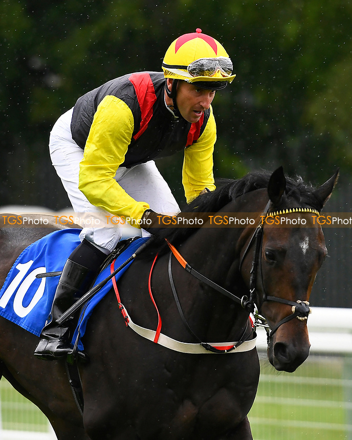 Born on the Clyde ridden by Mr. S Walker goes down to the start of The Party Continues At The Chapel Nightclub 'Carnarvon' Handicap, during Evening Racing at Salisbury Racecourse on 29th July 2017