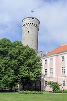 Parlament und Turm Pikk Herman in Tallinn in Tallinn (Reval), Estland, Europa, Unesco-Weltkulturerbe