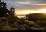 Sunrise, Vashon Island, Puget Sound, Washington