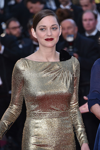 Marion Cotillard<br /> 'Mal de Pierres' screeningat 69th International Cannes Film Festival, France  May 15, 2016.<br /> CAP/PL<br /> &copy;Phil Loftus/Capital Pictures /MediaPunch ***NORTH AND SOUTH AMERICA ONLY***
