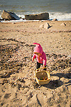 Toddler girl child on beach with basket collecting shells.