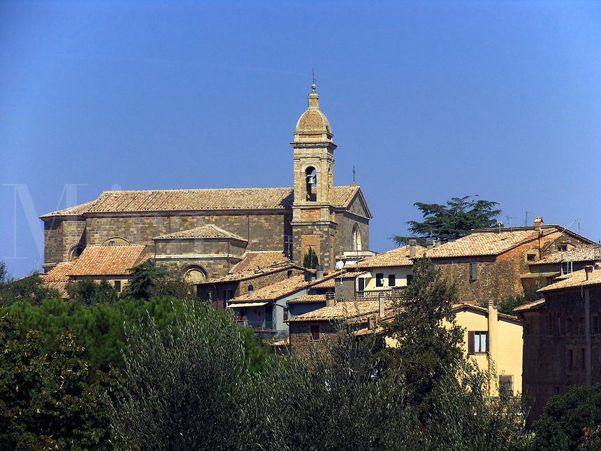 Church on hilltop above houses and olive tress in Montalcino, Ital