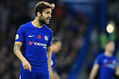 5th November 2017, Stamford Bridge, London, England; EPL Premier League football, Chelsea versus Manchester United; Cesc Fabregas of Chelsea urges on his team mates