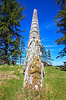 Totem Pole still standing in the village  of K'uuna Llnagaay or Skedans, on Louise Island in Haida Gwaii, British Columbia, Canada.