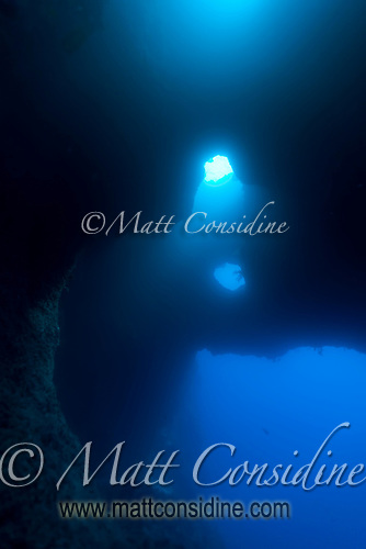 Blue Holes is one of the best dives in Palau. The light creates a cathedral like atmosphere, giving the diver a sense of vast the volume of the cave Palau Micronesia. (Photo by Matt Considine - Images of Asia Collection) (Matt Considine)