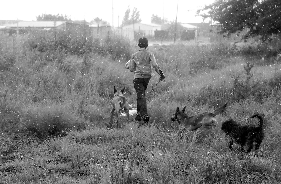A boy runs off in the rain after his dogs are treated at a mobile CLAW clinic in Snake Park, South Africa. IFAW's CLAW program provides veterinary services to cats and dogs in some of the poorest shantytowns outside of Johannesburg, South Africa. 2/27/12 Julia Cumes/IFAW