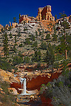 Waterfall, Eastern Bryce Canyon, Utah