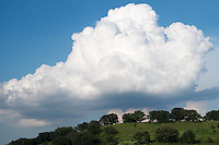 A cloud crowns the hill at the Pheasant Branch Conservancy.