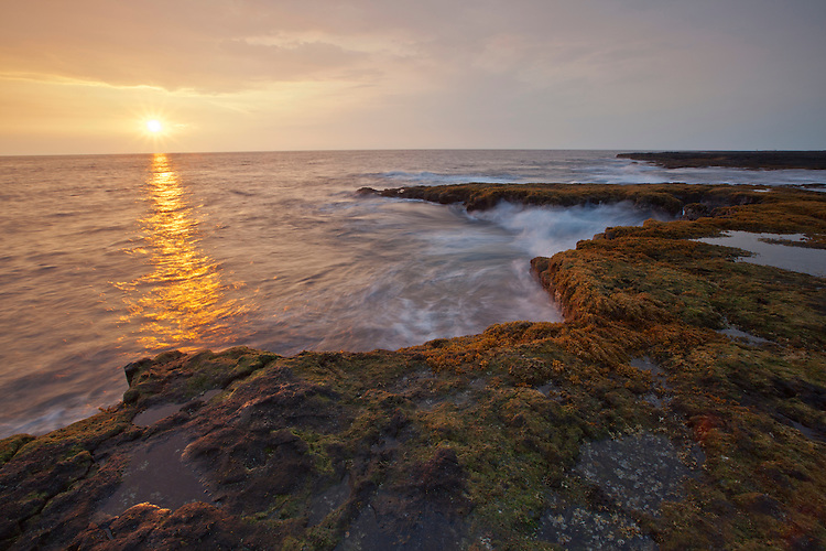 Volcanic coastline in the Pu`uhonua O H?naunau National Historic Park