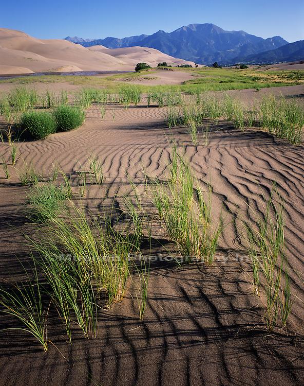 Dunes   Humbolt Peak Great Sand Dunes NP  COLORADO