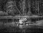 Gary Wagner Photography, Merit Winner Black and White Magazine