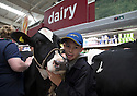 09/08/15<br /> <br /> ***with video***<br /> <br /> Joel Dary (14)  from Stone, Staffordshire.<br /> <br /> Protesting dairy farmers brought chaos to an Asda store today when they marched two cows through the aisles to the dairy produce area of the supermarket in Stafford where a spokesman called for the public's support to increase the amount dairy farmers are paid for mllk.<br /> All Rights Reserved - F Stop Press.  www.fstoppress.com. Tel: +44 (0)1335 418629 +44(0)7765 242650