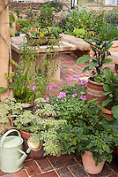 Backyard vegetable & flower garden in containers and pots and raised beds on home brick patio