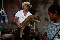 Huastec Indian man and woman haggle over a pig at the local market near San Lois Potosi in Mexico. He holds up a young pig enticing the buyer as they barter over the price.