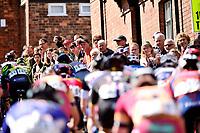 Picture by Allan McKenzie/SWpix.com - 14/05/2017 - Cycling - HSBC UK British Cycling Spring Cup Series  - Lincoln Grand Prix 2017 - Peloton michaelgate climb