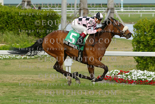 Royal Highness #5 with Edgar Prado riding won the $100,000 Very One Handicap at Gulfstream Park in Hallandale, Florida on Sunday February 25, 2007.  Photo By Justin Dernier/EQUI-PHOTO