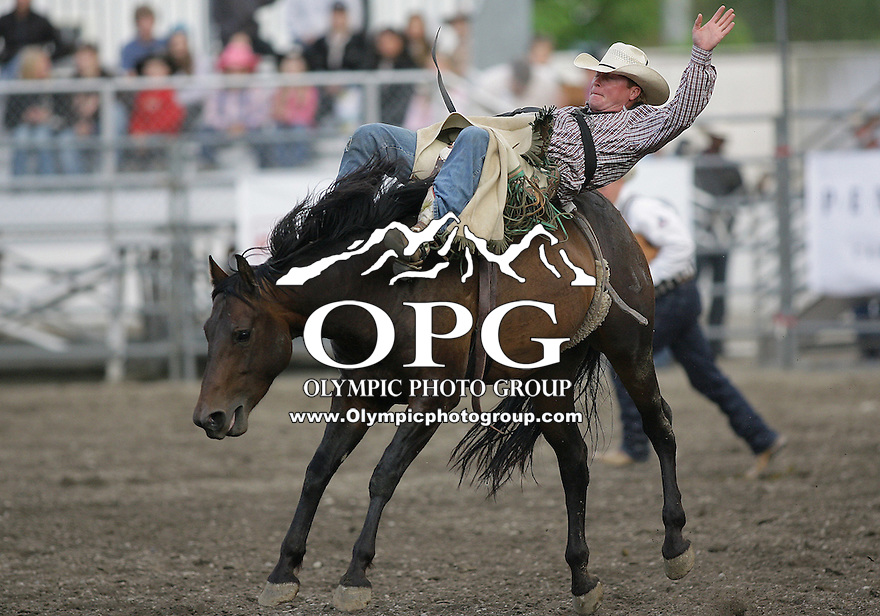 26 Aug 2010:  Lee Lantz riding the horse Mud Pie scored a 64 in the Bareback Riding competition at the Kitsap County Stampede Wrangle Million Dollar PRCA Silver Rodeo Tour Bremerton, Washington.