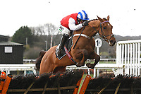 Fraser Island ridden by Nico de Boinville clear the last in  The That Friday-Ad Feeling Novices' Hurdle during Horse Racing at Plumpton Racecourse on 10th February 2020