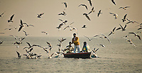 Tourists enjoying a boat ride and feeding a flock of birds in misty morning on the river Ganga in Varanasi. (Photo by Matt Considine - Images of Asia Collection)