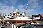 Port Townsend, salmon seiner, Veteran, classic wooden fishing boat, hauled out, Port of Port Townsend, Boat Haven, Jefferson County, Olympic Peninsula, Washington State, Pacific Northwest, USA,