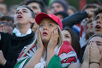 Wales fans at the Cardiff Fanzone look dejected after Belgium's first goal during the Euro 2016 quarter final between Wales and Belgium , Cardiff, Wales on 1 July 2016. Photo by Mark  Hawkins/PRiME Media Images.