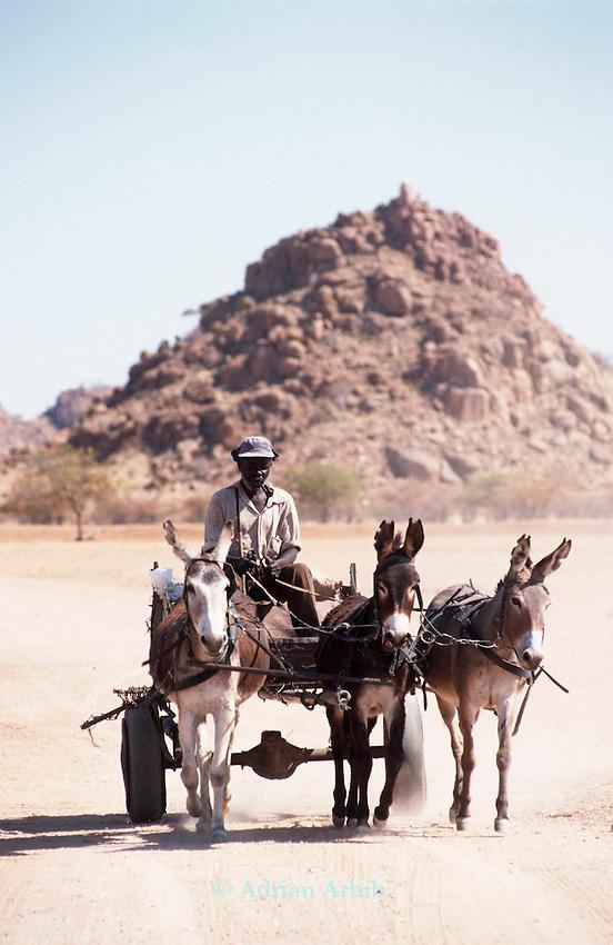 A Damara man travelling by donkey  and cart ;  Damaraland, Namibia