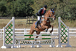02/10/2016 - Class 7 - Unaffiliated showjumping - Brook Farm Trainig Centre