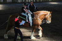 RDA State Vaulting Championships 2014