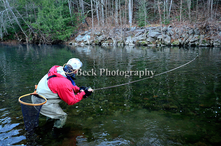 Cold November morning, fly fishing, Toby Thompson