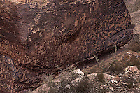 Newspaper Rock in the Petrified Forest National Park contains petroglyphs hundreds of years old.
