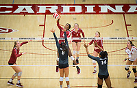 STANFORD, CA - November 2, 2018: Jenna Gray, Tami Alade, Meghan McClure, Kate Formico, Morgan Hentz at Maples Pavilion. No. 1 Stanford Cardinal defeated No. 15 Colorado Buffaloes 3-2.
