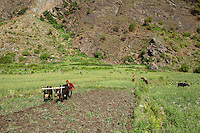 A farmer ploughs his field in Chilme. Tamang Heritage Trail, Nepal, 04 May 2013.