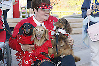 "Vickie Jackson of San Diego sits with her daschunds, Princess, Bella and Jazzi at the Spreckels Organ Pavillion in  San Diego California, December 23rd, 2007.  Members of the San Diego Dachshund Club and other dog owners  paraded across the stage  with their pets while organist Carroll Williams and signer Johnny Hochgraefe performed ""All Creatures Great & Small"" during the annual Christmas Sing-Along."