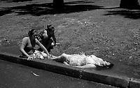 01.2010 Santiago de chile (Chile)<br /> <br /> Jeunes filles jouant dans une flaque d'eau.<br /> <br /> Young girls playing in a puddle.