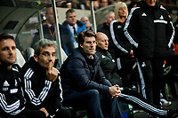 Thursday 28 November  2013  Pictured: Swansea City bench <br /> Re:UEFA Europa League, Swansea City FC vs Valencia CF  at the Liberty Staduim Swansea